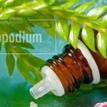Para que sirve el lycocodium